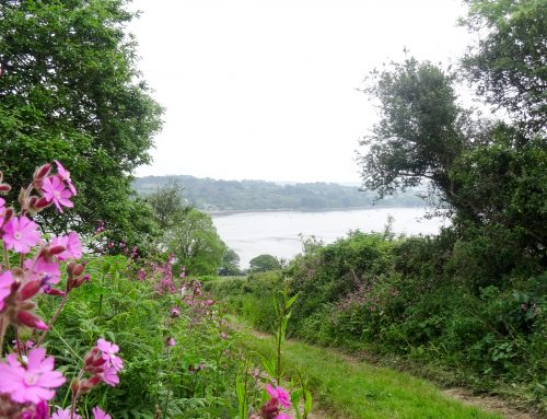 The Pandora Inn and Mylor Bridge Walk