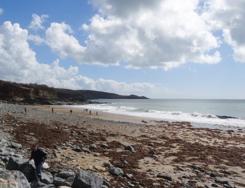 Perranuthnoe to Prussia Cove walk