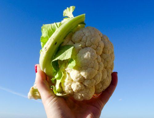 Scrumptious Cornish Cauliflower Recipes