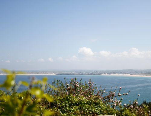 The Cornish Coast Path from Carbis Bay to St Ives